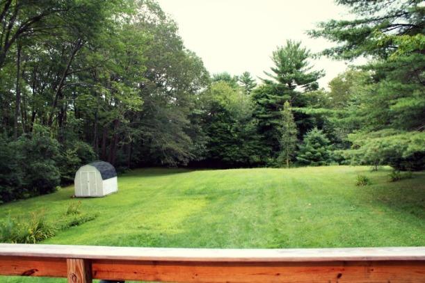 Backyard before septic