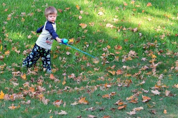 fishing in the yard