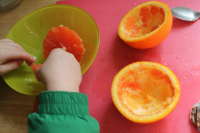 orange bird feeders 2
